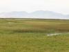 Landschaft um den Bear River