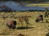 Weidende Bison